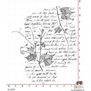 tampon-fond-ecriture-branche-2