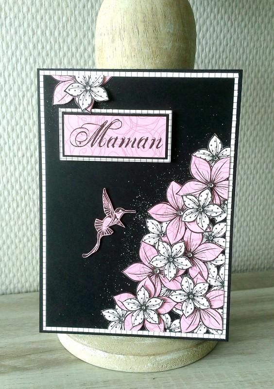 6 carte colibri rose