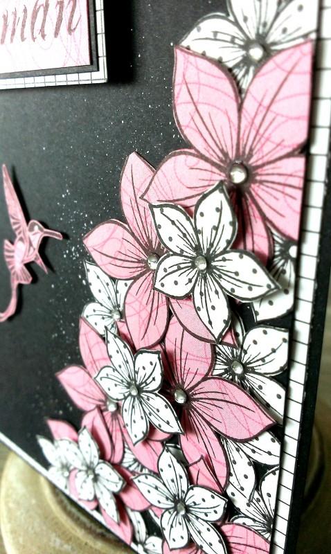 6 carte colibri rose bis
