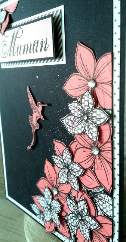 7 carte colibri corail bis
