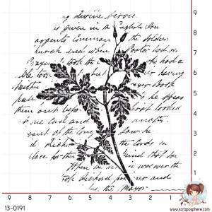 tampon-fond-ecriture-branche-1