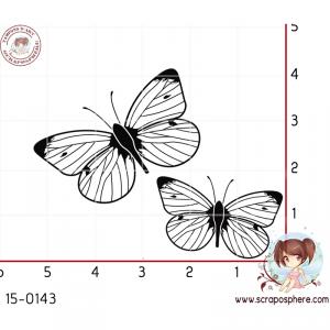 tampon-papillon-1.jpg