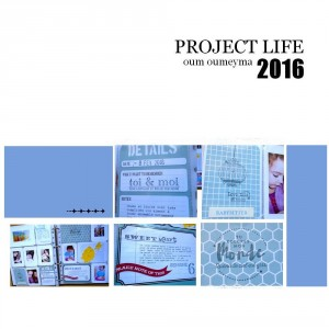 project life 5