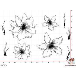 9-tampons-fleur-et-pistil
