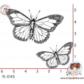tampon-papillon-3
